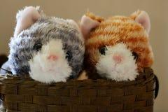 Μαλακά παιχνίδια - γατάκια στοκ εικόνα με δικαίωμα ελεύθερης χρήσης