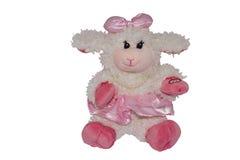 Μαλακά πρόβατα παιχνιδιών Στοκ εικόνες με δικαίωμα ελεύθερης χρήσης