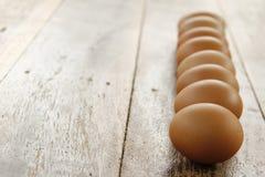 Μαλακή εστίαση των αυγών Στοκ φωτογραφία με δικαίωμα ελεύθερης χρήσης