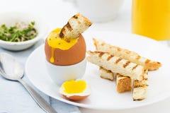 Μαλακό βρασμένο αυγό με τη φρυγανιά για το πλούσιο πρόγευμα Στοκ εικόνα με δικαίωμα ελεύθερης χρήσης