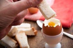 Μαλακό βρασμένο αυγό στο φλυτζάνι αυγών και εξυπηρετημένος με τα δάχτυλα φρυγανιάς στοκ εικόνα