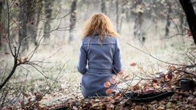 μαλλιαρό κόκκινο κοριτσ&i Στοκ Φωτογραφία