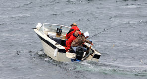 μεγάλα άτομα μικρά τρία ψαρι Στοκ Εικόνα