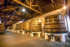 Μεγάλα βαρέλια κρασιού Στοκ Εικόνες