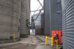 Μεγάλα βιομηχανικά γεωργικά σιλό αμερικανικό Midwest στοκ εικόνες με δικαίωμα ελεύθερης χρήσης