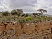 μεγάλα βορειοδυτικά φαραγγιών της Αιθιοπίας κοντά στην κατάθλιψη Danakil στοκ φωτογραφίες με δικαίωμα ελεύθερης χρήσης