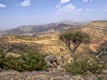 Μεγάλα βορειοδυτικά φαραγγιών της Αιθιοπίας κοντά στην κατάθλιψη Danakil στοκ φωτογραφία