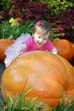 Μεγάλα κολοκύθα και μωρό στοκ φωτογραφία