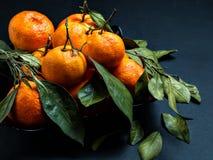 Μεγάλα πορτοκαλιά tangerines με τους κλάδους και τα φύλλα εξυπηρετούνται για Στοκ φωτογραφία με δικαίωμα ελεύθερης χρήσης
