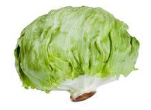 μεγάλα πράσινα επικεφαλής λαχανικά λάχανων στοκ εικόνες