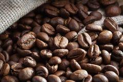 Μεγάλα σιτάρια του καφέ closeup διάστημα αντιγράφων Στοκ Φωτογραφία