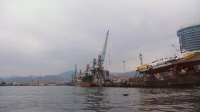 Μεγάλα φορτηγά πλοία στην εκφόρτωση στο θαλάσσιο λιμένα Γερανοί για το φορτίο και εμπορευματοκιβώτια που παραδίδονται θαλασσίως απόθεμα βίντεο