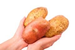 μεγάλες πατάτες Στοκ Εικόνα