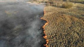 Μεγάλης κλίμακας πυρκαγιές Καίγοντας χλόη και δέντρα σε μια μεγάλη πε φιλμ μικρού μήκους