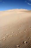 μεγάλη άμμος ΗΠΑ αμμόλοφων Στοκ Εικόνα