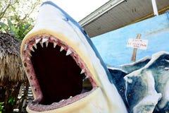 Μεγάλη μεγάλη άσπρη επίδειξη καρχαριών με το ευρύ ανοικτό στόμα στοκ εικόνες