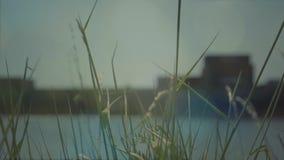 Μεγάλη βάρκα στο λιμάνι απόθεμα βίντεο