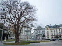 Μεγάλη εικονική παράσταση πόλης δέντρων στη χειμερινή εποχή, Βιέννη Αυστρία Στοκ Φωτογραφίες