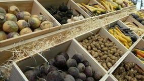 Μεγάλη επιλογή των λαχανικών και των πατατών ρίζας για την πώληση σε μια αγορά απόθεμα βίντεο