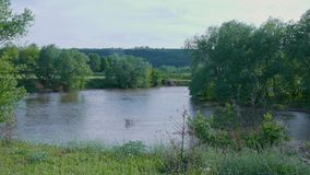 Μεγάλη θέση για την αλιεία στον ποταμό με τις πράσινες τράπεζες απόθεμα βίντεο