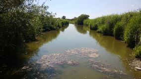 Μεγάλη θέση λιμνών στην ατλαντική Loire στοκ φωτογραφία με δικαίωμα ελεύθερης χρήσης