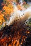 Μεγάλη κόκκινη πυρκαγιά με τον καπνό Στοκ Φωτογραφίες