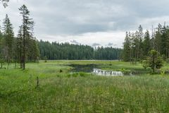 Μεγάλη λίμνη Arber, Βαυαρία - Γερμανία Στοκ Φωτογραφίες