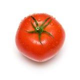 μεγάλη ντομάτα Στοκ Φωτογραφίες