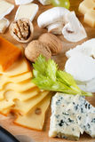 μεγάλη ομάδα τυριών Στοκ Εικόνες