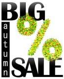 Μεγάλη πώληση φθινοπώρου Διανυσματικό έμβλημα για το χρόνο πώλησης Πράσινα τοις εκατό EPS10 Στοκ Εικόνες
