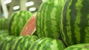 Μεγάλη σειρά των προϊόντων των υγιών τροφίμων Πράσινα καρπούζια στους μετρητές Τα καρπούζια κλείνουν επάνω απόθεμα βίντεο