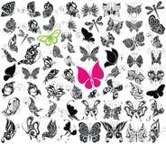 Μεγάλη συλλογή πεταλούδων, απεικόνιση, σχεδιασμός απεικόνιση αποθεμάτων
