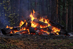 μεγάλη φωτιά πολύ Στοκ Φωτογραφίες
