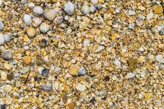 Μεγάλη χονδροειδής άμμος θάλασσας με τα τεμάχια και τα κοχύλια θάλασσας συντριμμιών στοκ φωτογραφίες με δικαίωμα ελεύθερης χρήσης