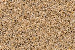 Μεγάλη χονδροειδής υγρή άμμος θάλασσας που αποτελείται από τα τεμάχια και τα κοχύλια θάλασσας συντριμμιών στοκ εικόνα με δικαίωμα ελεύθερης χρήσης