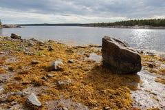 μεγάλη seacoast εκροής τοπίων πέτρα Στοκ εικόνες με δικαίωμα ελεύθερης χρήσης