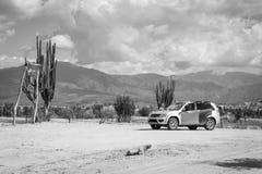 Μεγάλοι κάκτοι στην κόκκινη έρημο, έρημος tatacoa, Κολομβία, λατινικό amer Στοκ φωτογραφίες με δικαίωμα ελεύθερης χρήσης