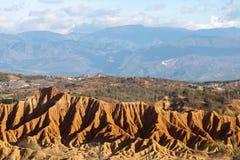 Μεγάλοι κάκτοι στην κόκκινη έρημο, έρημος tatacoa, Κολομβία, λατινικό amer Στοκ φωτογραφία με δικαίωμα ελεύθερης χρήσης