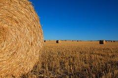 μεγάλος κύκλος haybales Στοκ Φωτογραφίες