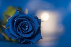 Μεγάλος, μπλε αυξήθηκε εικόνα δώρων ανθών Στοκ Φωτογραφία