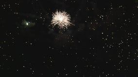 Μεγάλος πολύχρωμος χαιρετισμός στον ουρανό βραδιού απόθεμα βίντεο