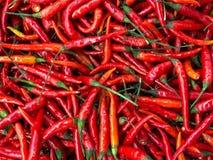 Μεγάλος σωρός των κόκκινων πιπεριών Στοκ φωτογραφίες με δικαίωμα ελεύθερης χρήσης