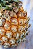 μεγάλος φρέσκος juicy ανανάς Στοκ Εικόνες
