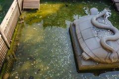 Μεγάλο άγαλμα χελωνών και φιδιών στη μεγάλη λίμνη νερού με τα χρήματα Yuan στο νερό pont στον προγονικό ναό Foshan στοκ φωτογραφίες