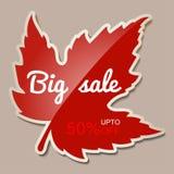 Μεγάλο έμβλημα πώλησης φθινοπώρου με το κόκκινο φύλλο σφενδάμου - 50 τοις εκατό μακριά Στοκ Εικόνες