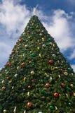 μεγάλο δέντρο Χριστουγέν& στοκ εικόνες με δικαίωμα ελεύθερης χρήσης