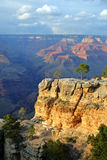 μεγάλο εθνικό πάρκο ΗΠΑ φα στοκ εικόνα