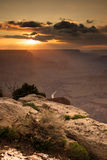μεγάλο εθνικό πάρκο ΗΠΑ φα στοκ εικόνα με δικαίωμα ελεύθερης χρήσης