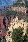 μεγάλο εθνικό πάρκο ΗΠΑ φα στοκ εικόνες με δικαίωμα ελεύθερης χρήσης