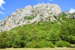 Μεγάλο εθνικό πάρκο φαραγγιών Paklenica, Κροατία Στοκ φωτογραφίες με δικαίωμα ελεύθερης χρήσης
